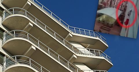 Balkonhund1