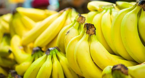 Banane St 480