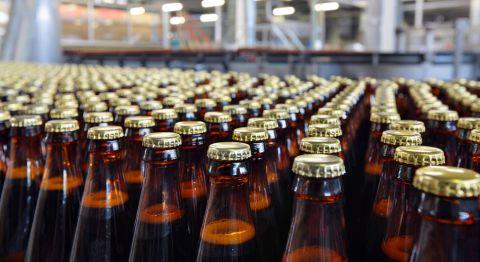 Bierflaschen St 480