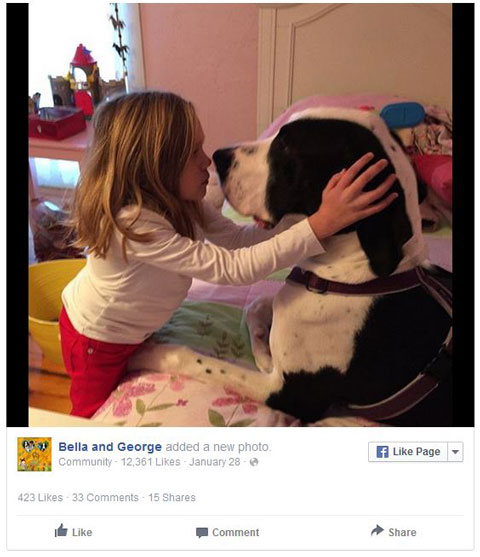 Facebook Bella And George