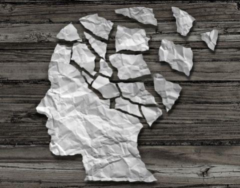 Gehirn 480x