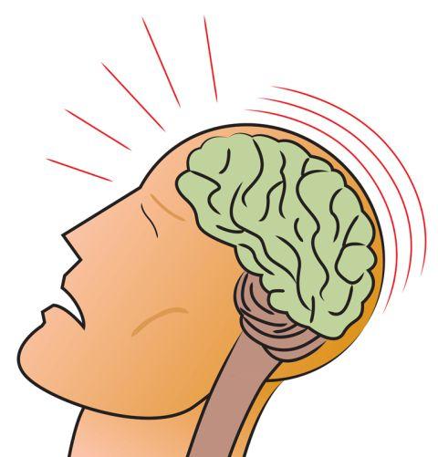 Gehirn Shutterstock Gross