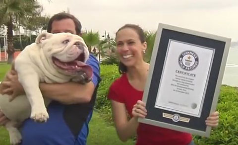 Guinness World Records4
