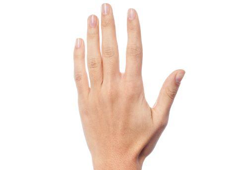 Hand 480