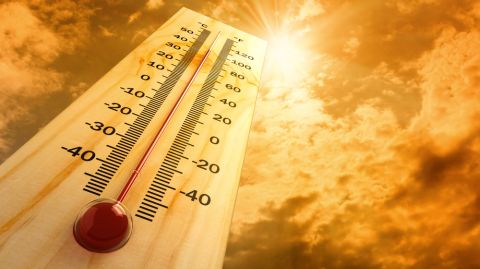 Hitze St 480