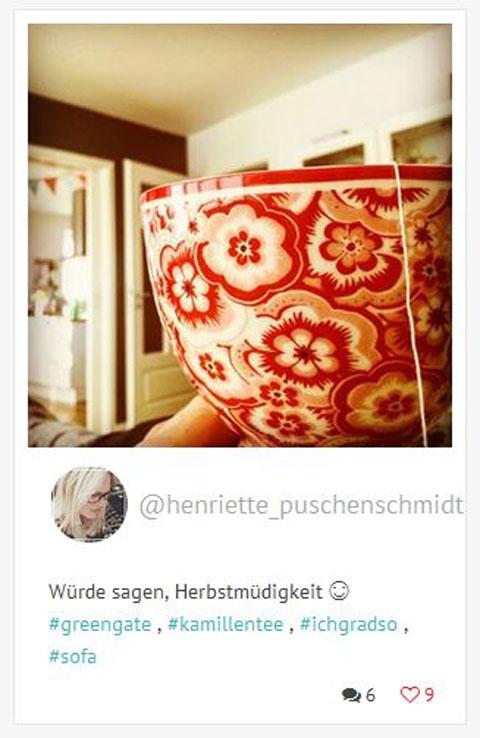 Instagram Henriette Puschenschmidt