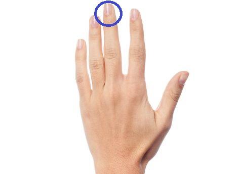 Mittelfinger 480