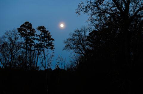 Nacht Shutterstock 480x
