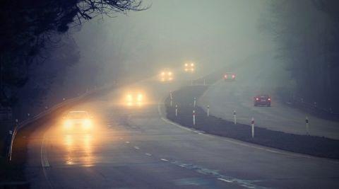 Nebel St 480