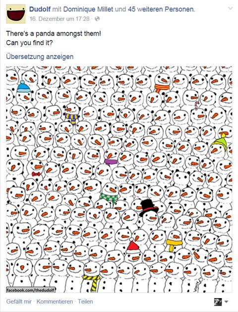 Panda Raetsel