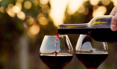 Wein St 480