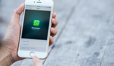Whatsapp 10 Face 480 St