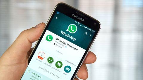 Whatsapp Dennizn 480