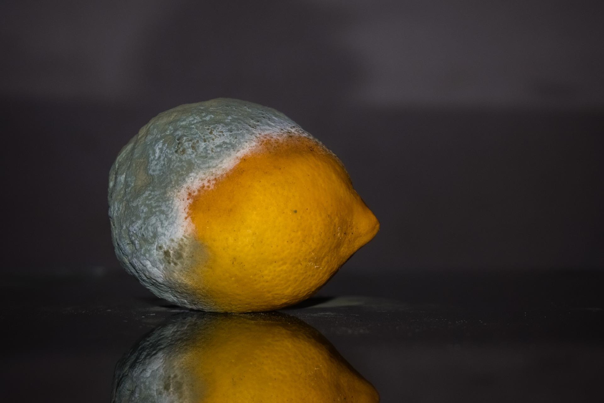 lemon-2146987_1920.jpg