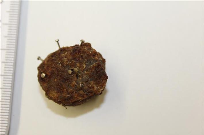pol-pdko-fleischbaellchen-mit-naegeln-ausgelegt.jpg